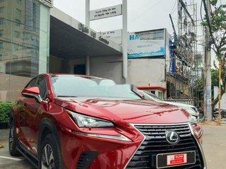 Bán nhanh chiếc Lexus NX 300 năm sản xuất 2018, xe nhập