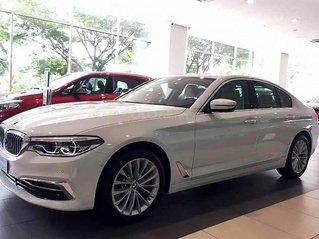 Bán ô tô BMW 530i sản xuất 2020, màu trắng, xe nhập
