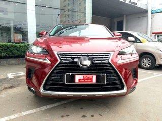 Cần bán Lexus NX 300 sản xuất 2018, nhập khẩu nguyên chiếc