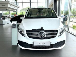 Bán xe Mercedes-Benz V250 Luxury sản xuất năm 2020, xe nhập
