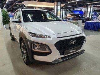 Bán Hyundai Kona 2.0AT năm 2020, xe chính chủ giá ưu đãi