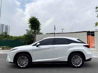 Bán Lexus RX sản xuất năm 2019, màu trắng, nhập khẩu nguyên chiếc còn mới