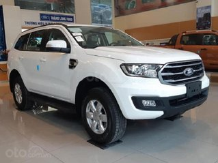 Cần bán nhanh chiếc Ford Everest Ambiente MT sản xuất 2020