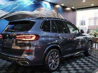 Bán xe BMW X5 xDrive40i M Sport sản xuất năm 2020, màu xanh lam, xe nhập