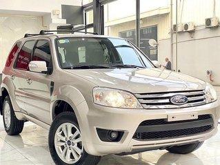Cần bán Ford Escape năm 2009, màu bạc