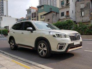 Cần bán lại xe Subaru Forester sản xuất năm 2019, màu trắng, xe nhập