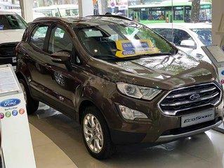 Cần bán Ford EcoSport năm sản xuất 2021, màu nâu, giá 600tr