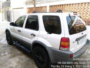 Bán Ford Escape năm sản xuất 2003, màu trắng còn mới, giá tốt