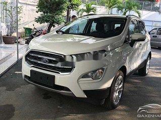 Bán Ford EcoSport năm 2021, nhập khẩu nguyên chiếc, giá chỉ 600 triệu