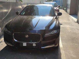 Bán ô tô Jaguar XF sản xuất năm 2019, xe nhập