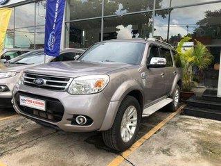 Cần bán Ford Everest sản xuất năm 2013, màu xám