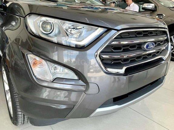 Ford Ecosport 2021 - mẫu xe mới nhất cùng hàng ngàn ưu đãi hấp dẫn