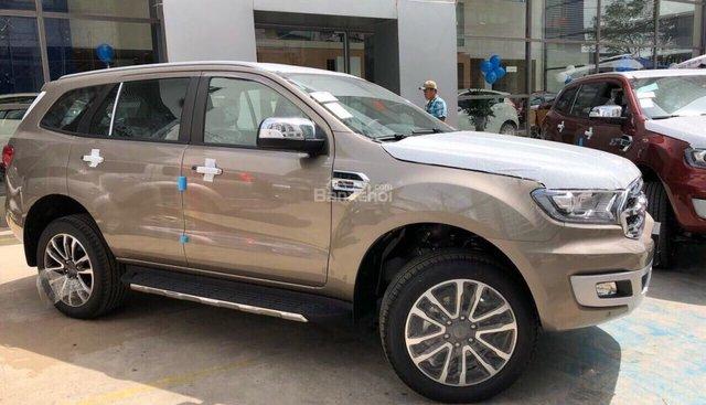 Bán Ford Everest 2.2L 4x2 Titanium AT đời 2019, màu ghi vàng nhập khẩu