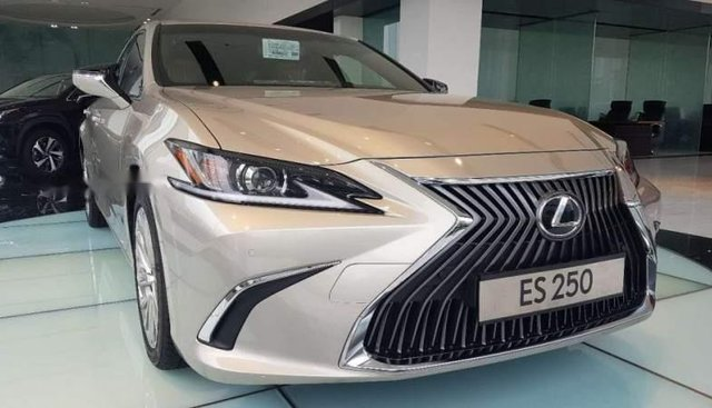 Bán Lexus ES 250 đời 2019, màu vàng cát, nhập khẩu