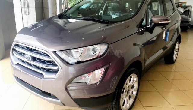 Bán ô tô Ford EcoSport 1.0 Ecoboost, giảm tiền tươi, tặng BHVC, đời 2019, màu xám, nâu