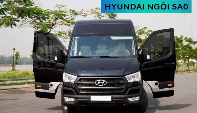 Cần bán xe Hyundai Solati Limousine năm 2019, màu đen