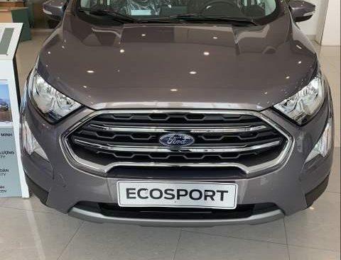 Cần bán xe Ford EcoSport sản xuất 2018, màu xám