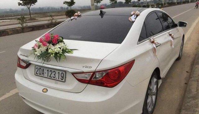 Bán xe Hyundai Sonata 2010, màu trắng, xe nhập số tự động, giá 500tr