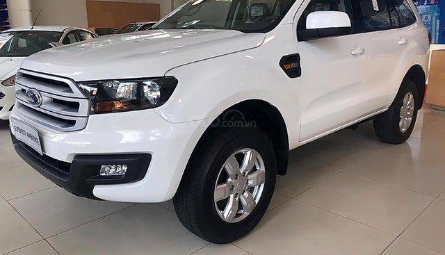 Bán xe Ford Everest Ambiente 2.0 4x2 MT 2019, màu trắng, nhập khẩu
