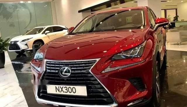 Cần bán Lexus NX 300 năm 2019, màu đỏ, nhập khẩu nguyên chiếc