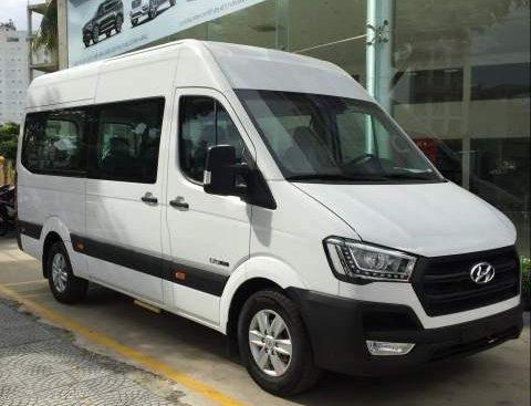 Cần bán Hyundai Solati năm sản xuất 2019, màu trắng