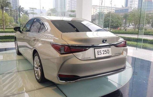 Bán Lexus ES 250 đời 2019, màu vàng cát, nhập khẩu4