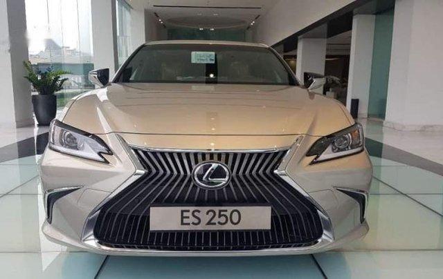 Bán Lexus ES 250 đời 2019, màu vàng cát, nhập khẩu1