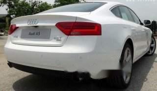 Bán ô tô Audi A5 Sportback sản xuất 2013, màu trắng 1
