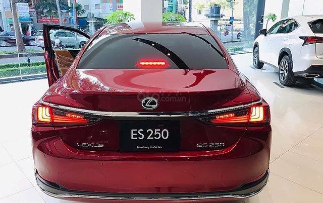 Bán ô tô Lexus ES 250 năm 2019, màu đỏ, nhập khẩu1