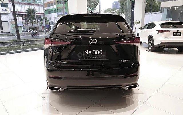 Bán xe Lexus NX 300 sản xuất 2019, màu đen, nhập khẩu1