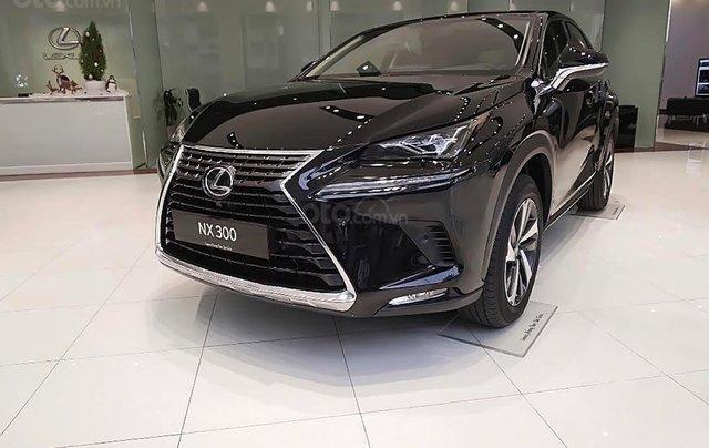 Bán xe Lexus NX 300 sản xuất 2019, màu đen, nhập khẩu0