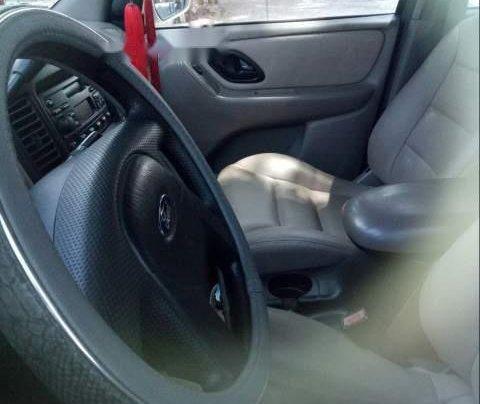 Bán Ford Escape năm sản xuất 2002, màu trắng, nhập khẩu1