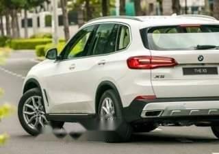 Bán ô tô BMW X5 sản xuất 2019, màu trắng
