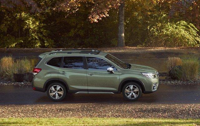Subaru Forester 2020 cập nhật nhiều công nghệ trợ lái hiện đại0