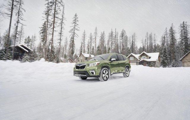 Subaru Forester 2020 cập nhật nhiều công nghệ trợ lái hiện đại5