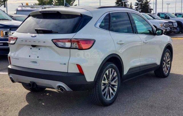 Bán ô tô Ford Escape Limited năm 2019, màu trắng, nhập khẩu4