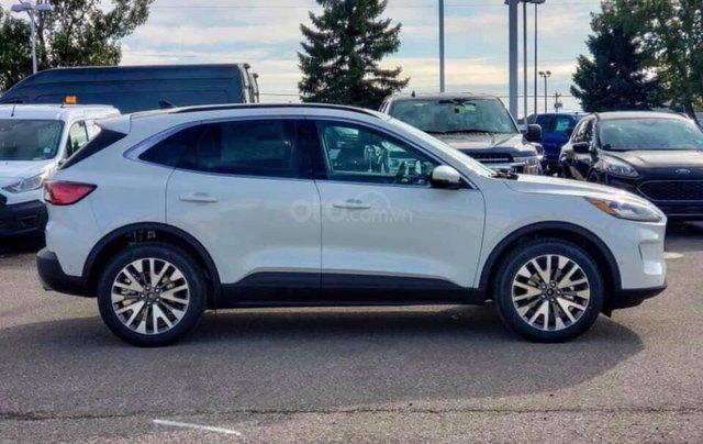 Bán ô tô Ford Escape Limited năm 2019, màu trắng, nhập khẩu5