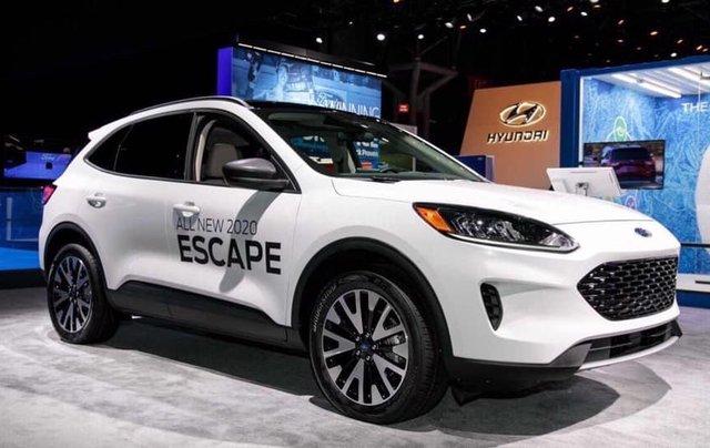 Bán ô tô Ford Escape Limited năm 2019, màu trắng, nhập khẩu0