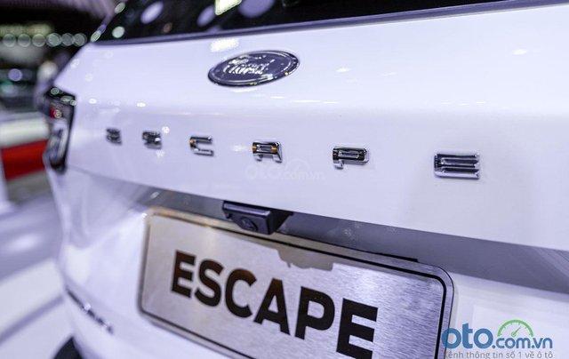 Ford Escape 2020 trưng bày tại VMS 2019, sắp ra mắt thị trường Việt12