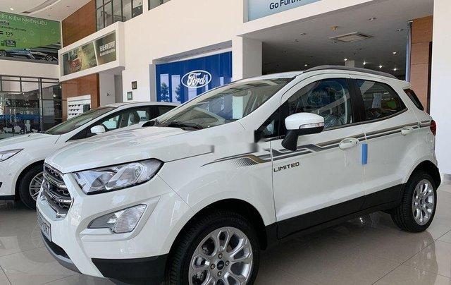 Bán ô tô Ford EcoSport năm 2019, màu trắng4