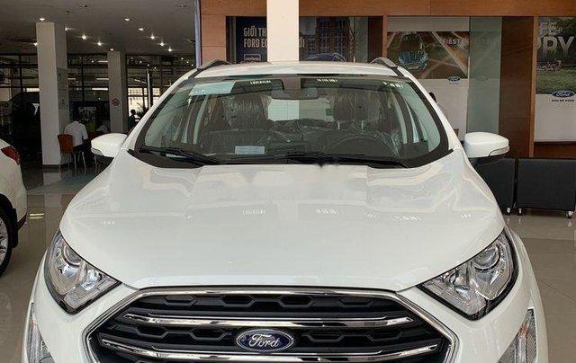Bán ô tô Ford EcoSport năm 2019, màu trắng2