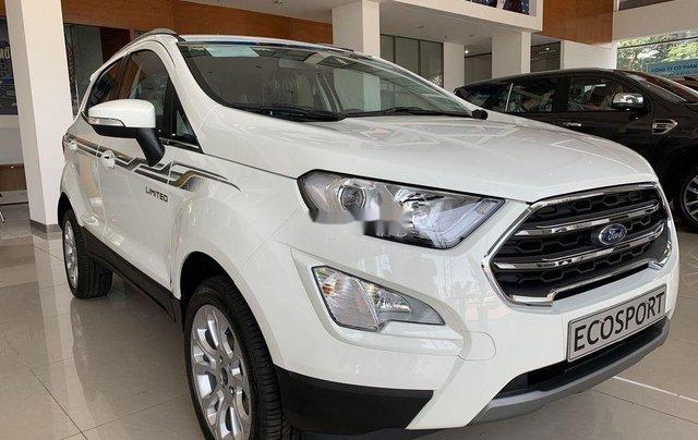 Bán ô tô Ford EcoSport năm 2019, màu trắng0
