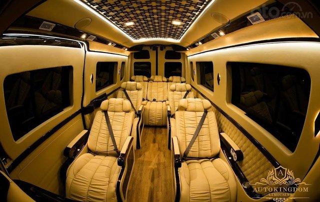 Solati Limousine- Chiếc xe dành cho đại gia đình3
