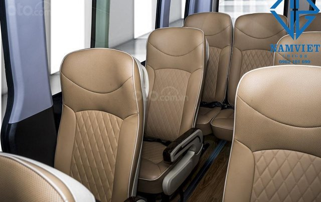Cần bán Hyundai Solati đời 2019, màu đen5