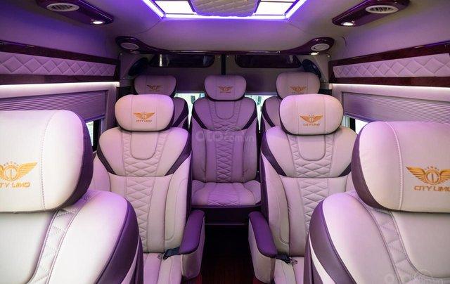 Cần bán Ford Transit Limousine cao cấp đời 2020, màu đen, giá tốt nhất thị trường10