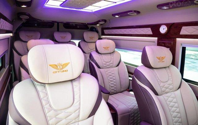 Cần bán Ford Transit Limousine cao cấp đời 2020, màu đen, giá tốt nhất thị trường9