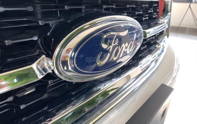 Ford Everest Titanium 2.0L 4x2 AT SX 2020, nhiều ưu đãi hấp dẫn7