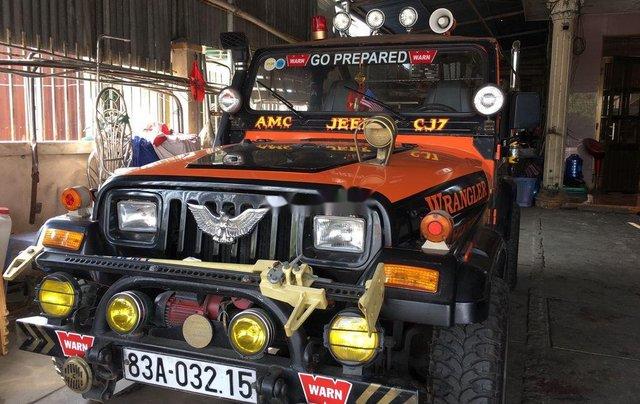 Cần bán lại xe Jeep Wrangler đời 1996, hai màu, nhập khẩu nguyên chiếc chính chủ, 310tr0