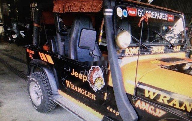 Cần bán lại xe Jeep Wrangler đời 1996, hai màu, nhập khẩu nguyên chiếc chính chủ, 310tr6