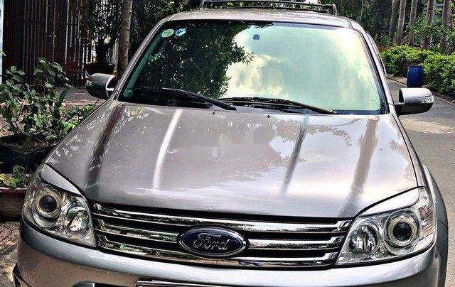 Bán ô tô Ford Escape đời 2010, màu xám, nhập khẩu nguyên chiếc 1